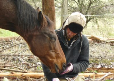 i15-14931 Dario Veri & horse4