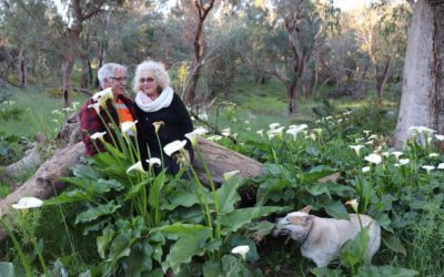 WWOOFing in Baldivis