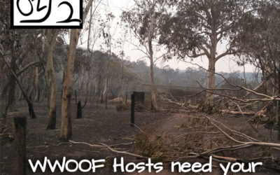 Have you been affected by the Bushfires?