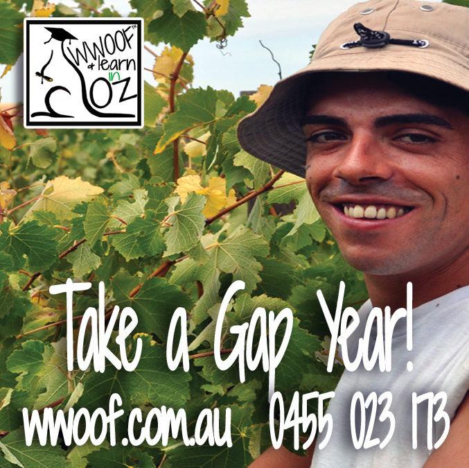 WWOOF Australia – Gap Year