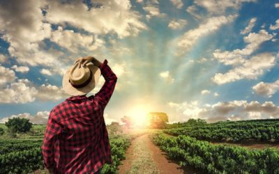 WWOOF your way to a new path in life