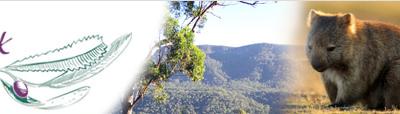 2nd Year Visa Sign off in NSW Kangaroo Valley