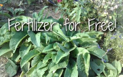 Fertilizer for Free