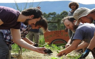 Learn how to become a steward of the land, WWOOFing