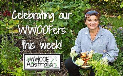 Celebrating WWOOFers Week