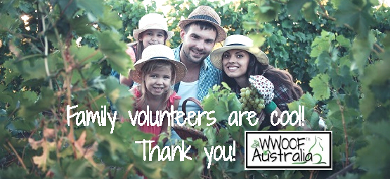 Family Volunteers are Cool, Thank you.
