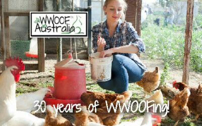 WWOOFing on and off for 30 years!