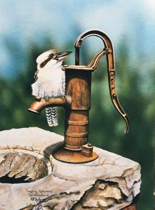 Kookaburra on water pump