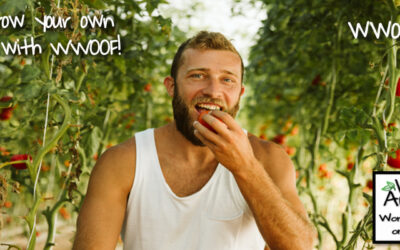 Why we joined WWOOF