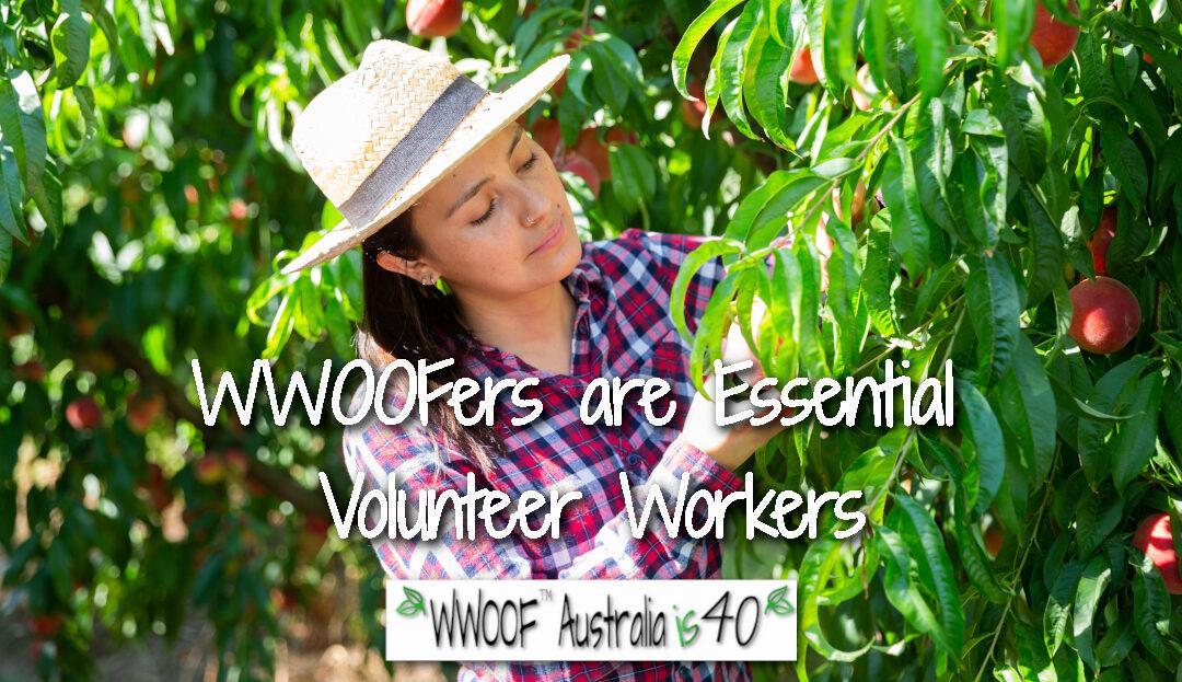 WWOOFers are Essential Volunteers