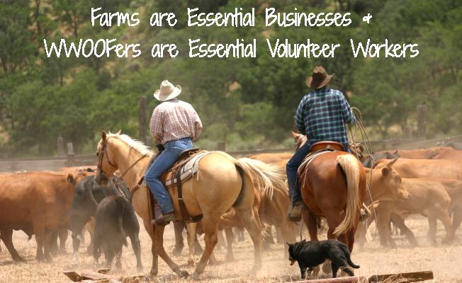 Farms are Essential