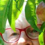 Profile picture of Margaret Lockhart VW061