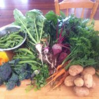 Some of our winter vegetables grown on farm