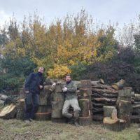 woodcutter skills