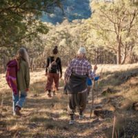 Bush walks in Nature reserve surrounding our property
