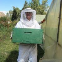 beekeeping_in_peru