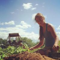 potato_farming_in_maine