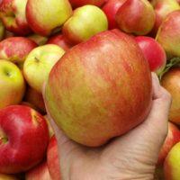 Heritage Apple
