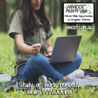 Work or Study remotely WWOOFing
