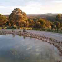 Wombat Creek (3)