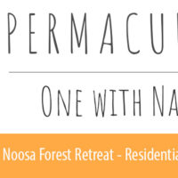 Ian Trew  Noosa Forest Retreat educator, one-with-nature