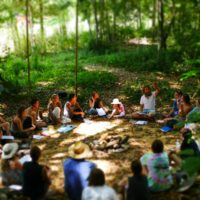 Noosa Forest Retreat Permaculture Course education centre Queensland PDC