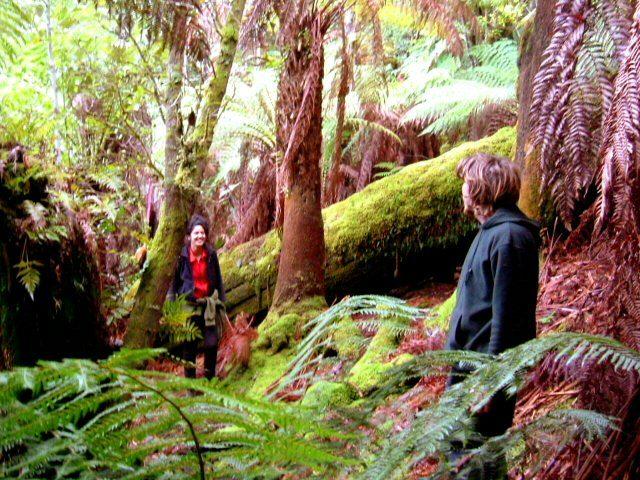 Billie and Rappie in Rainforest 640