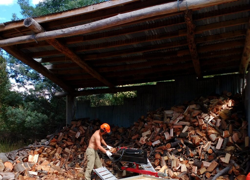 Guus splitting wood 35