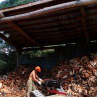 Guus splitting wood 35